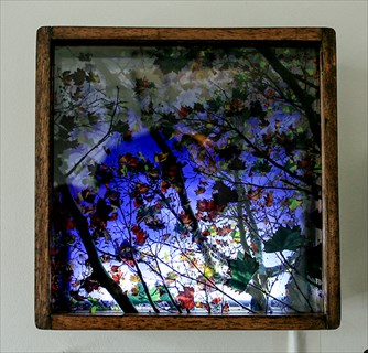 Perran Costi <i>Autumn</i> [2012] glass, hardwood, light 23 x 23 x 8.7cm
